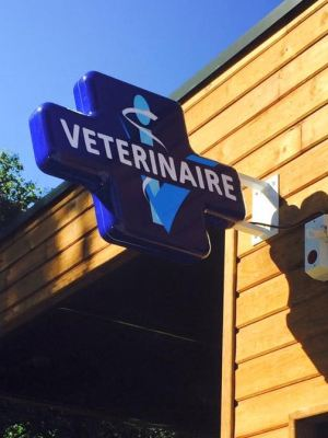 CLINIQUE VETERINAIRE ADHOCVET